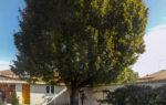 Achat vente villa maison plain pied  avec jardin à Vinon sur Verdon 83560 - Agence Immobilière Vinon sur Verdon 83560 Happyssimmo Haut-Var - Estimation Immobilière Vinon-sur-verdon 83560 Happyssimmo Haut-Var - Villa for sale in provence
