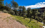 Agence Immobilière Happyssimmo Le Luc - Villa Maison à vendre avec jardin au Luc en Provence 83340 - Estimation Immobilière Le Luc en Provence